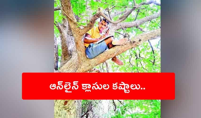 Online Classes On Tree : ఆన్లైన్ క్లాసుల కష్టాలు.. చెట్టెక్కిన విద్యార్థి